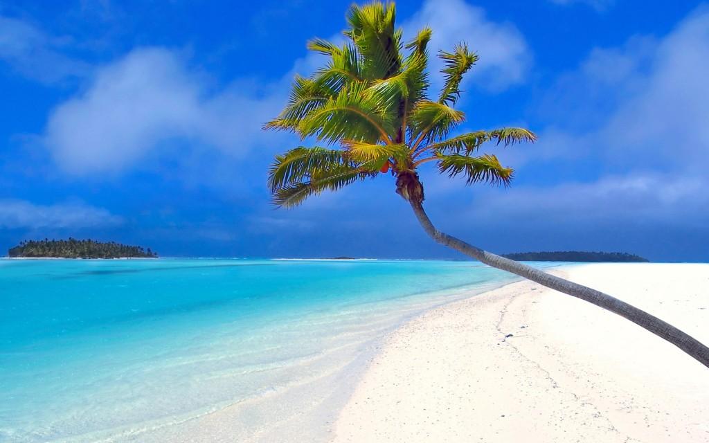 romantic-couple-on-beach-pin-palm-trees-a-the-moon-love-mood-1035873