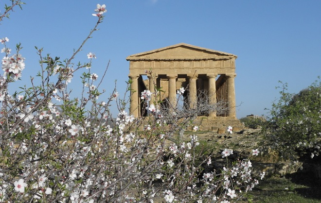 agrigento-temple-of-condordia-almond-blossom
