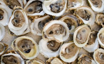 PEI shellfish fest